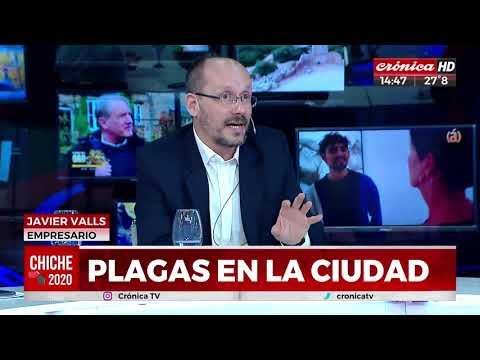 La Casa de los insecticidas en Cronica Tv.