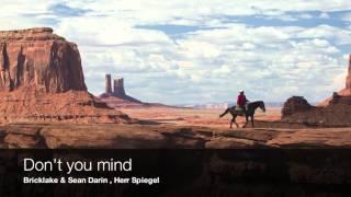 Bricklake & Sean Darin , Herr Spiegel - Don't you mind