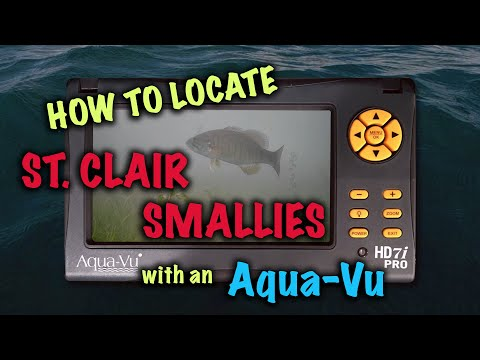 How to Locate St. Clair Smallies, with an Aqua-Vu!