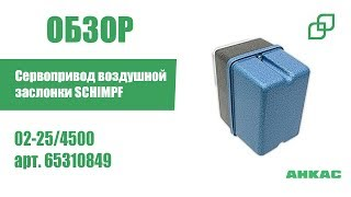 Сервопривод воздушной заслонки SCHIMPF 02-25/4500 арт. 65310849