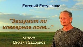 """Михаил Задорнов """"Зашумит ли клеверное поле..."""""""