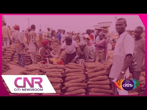 Atebubu farmers lament low prices of yam