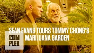 Tommy Chong's Medical Marijuana Garden | Complex