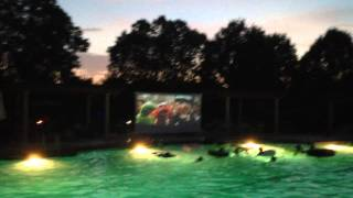 Poolside Projection Screen