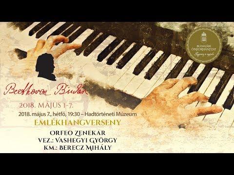 Beethoven Budán 2018 - Emlékhangverseny - video preview image