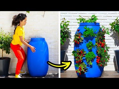 25 רעיונות וטיפים לעיצוב וקישוט נפלאים לגינה ולחצר