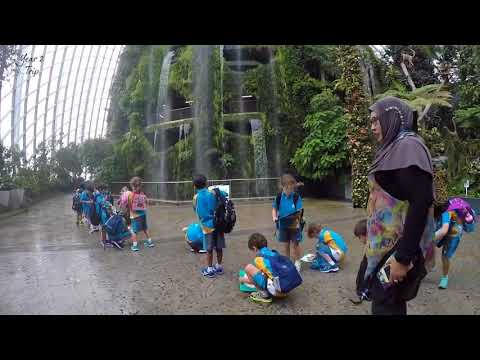 Year 2 Visit Gardens By The Bay