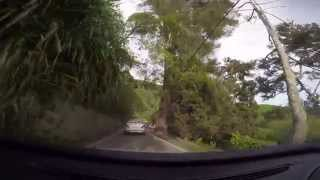 preview picture of video 'Our Journey to the Boh Tea Plantation Sungai Palas (1080P FHD)'