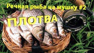 Ловля рыбы на мушку хищный рыб