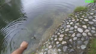 Рыбалка в железноводске с выдачей удочек