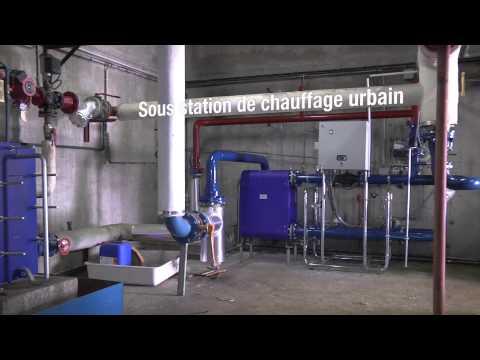 Swin golf Lavigny suisse anti aging