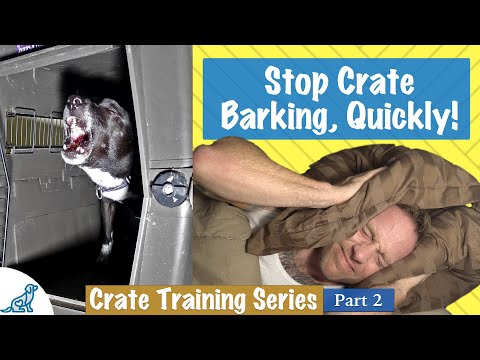 How To Stop Your Dog Barking In Crate At Night - Professional Dog Training Tips