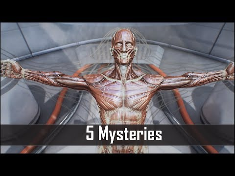 Fallout 4: 5 Spooky Mysteries You May Have Missed in the Commonwealth – Fallout 4 Secrets (Part 3)