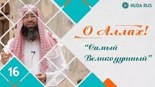 О Аллах - Самый Великодушный, Свидетель | Шейх Набиль аль-Авады