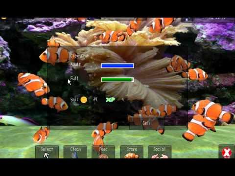 Video of Aqualand+ 3D Fish aquarium