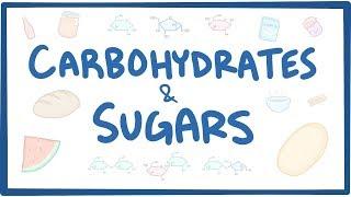Carbohydrates & sugars - biochemistry