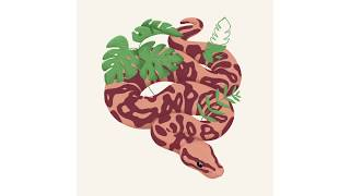 Snake With Leaves Illustration