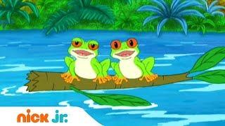 Гоу, Диего, Гоу! | Древесные лягушки | Nickelodeon
