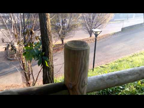 Acer Liquid S1: prova video Full HD