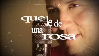 Le hace falta un beso - El chapo de sinaloa (Rey Fonseca -Cover versión salsa)