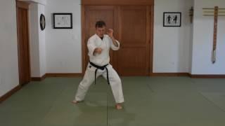 Kihonteki Nidan Instructions