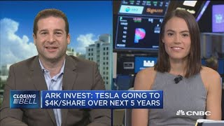 Tesla: Bull and Bear investors debate