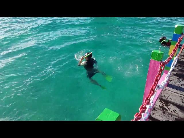 surga bawah laut,snorkeling derawan #part 7#