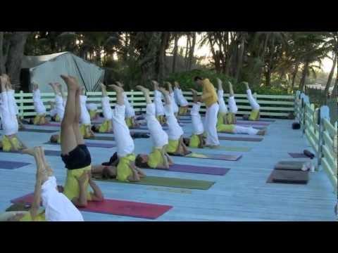 Yoga Teacher Training Course (TTC) - YouTube