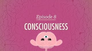 Consciousness - Crash Course Psychology #8