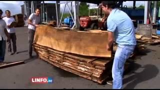 preview picture of video 'Bois de Tamarin du tronc à la planche Episode 4/5'