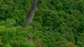 तामरश्शेरी चुरम (तामरश्शेरी मार्ग), वायनाड