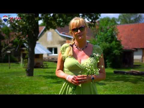 Video z << Prodej rodinného domu, 171 m2, Nížkovice >>