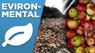 Environmental Contributions Thumbnail
