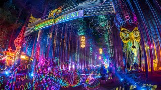 Electric Forest 2019 Aftermovie