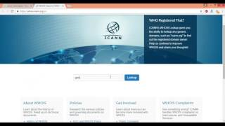 Who is domain owner information