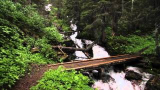 Trip video from Red Eagle Trailhead along the south shore of St. Mary Lake, past Virginia Falls and St. Mary Falls to the Going-to-the-Sun Road.