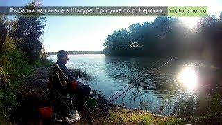 Отчет о рыбалке в шатуре вчера