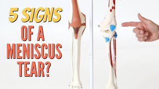 5 Signs Your Knee Pain is a Meniscus Tear-Self-Tests (Cartilage) Updated