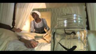 Yellow Fever - Historical Epidemics