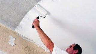 Покраска побелка потолка и плинтусов своими руками Обучение
