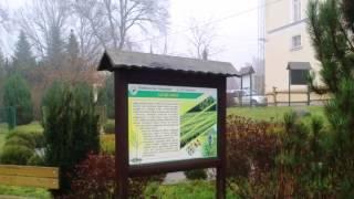 preview picture of video 'Nadleśnictwo Zawadzkie - park edukacyjny'