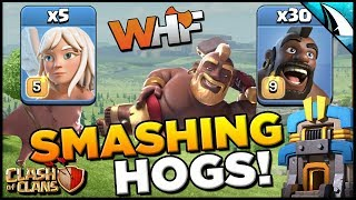 *Smashing Hogs* Strongest Ground Strategy at TH 12! | Clash of Clans