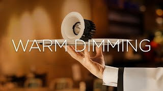 Warm Dimming – Ready to order?