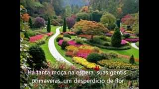Nicanor - Chico Buarque (Com Legendas)