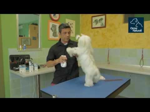 DENAS trattamento apparecchi delle articolazioni