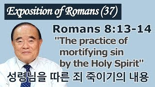 서문강 목사의 로마서강해 37.  성령님을 따른 죄 죽이기의 내용  ( The practice of mortifying sin by the Holy Spirit )