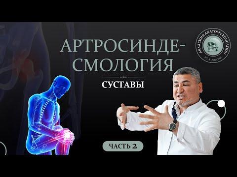 Суставы. Синдесмология. Артрология Часть 2 Syndesmology. Arthrology (joints, ligaments) Part 2