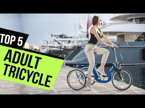 TOP 5: Adult Tricycle - Must Watch Before Buying