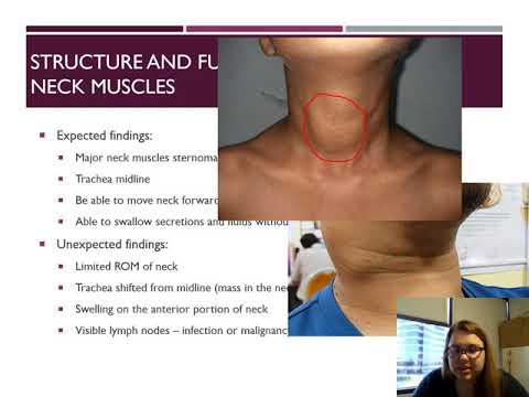 Tratamentul ureaplasmei și articulațiilor