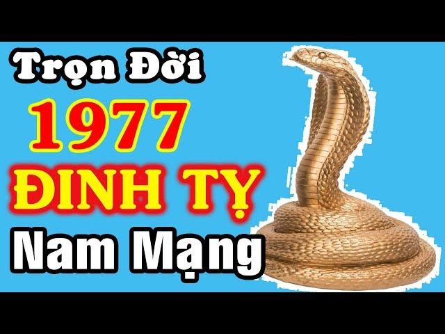 TỬ VI TRỌN ĐỜI Đinh Tỵ Nam Mạng 1977, Phát Tài Phát Lộc Năm Nào?